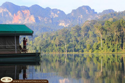 Elephant Hills Camp Rainforest-Camp-Wake up to breath taking views