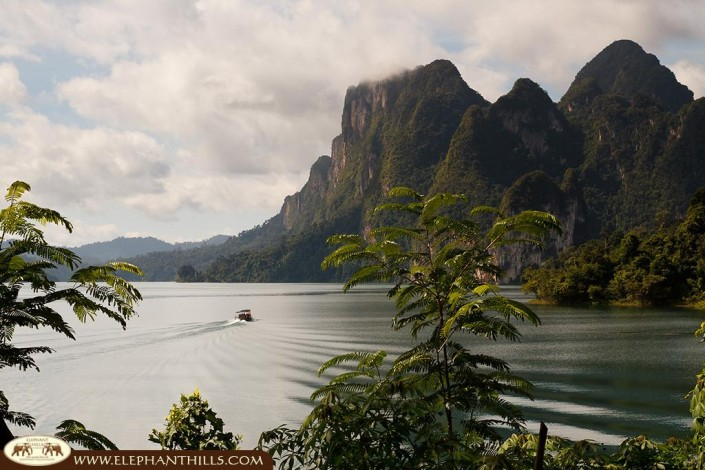 Elephant Hills Camp Wildlife-and-Nature-in-Khao-Sok-22-705x470