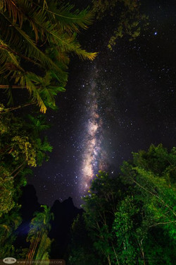 Elephant Hills Camp Milky-Way-at-Elephant-Hills-your night view