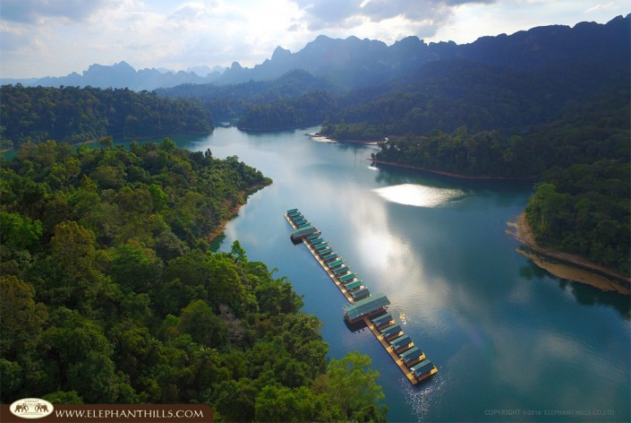 Elephant Hills Camp Rainforest-Camp expereince nature