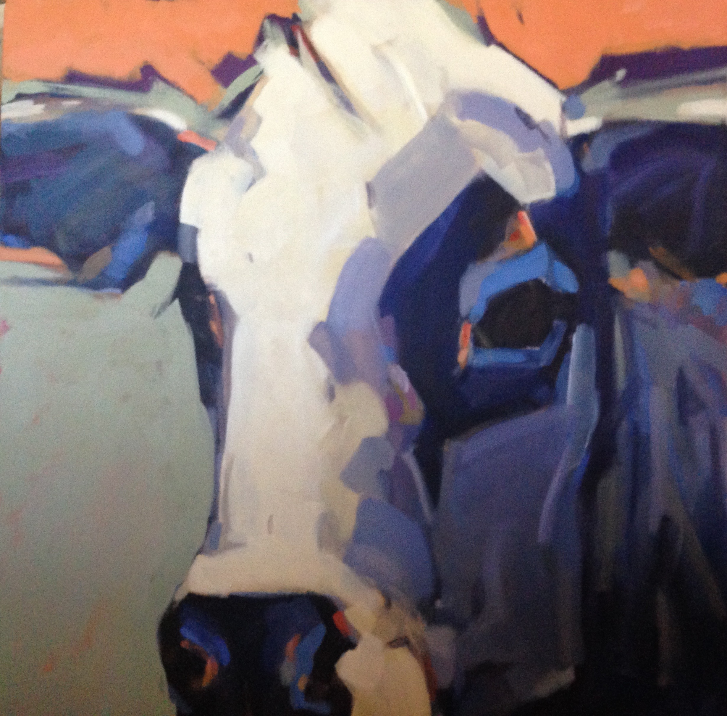 Modern Cow