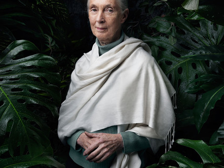 Dr. Jane Goodall Calling on Leaders to make Ethical Choices in order to Save the Planet