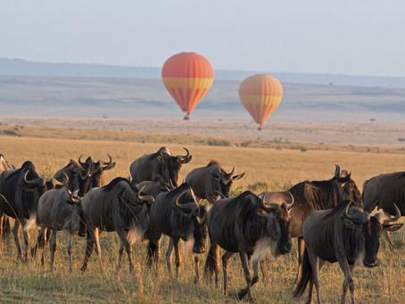 The Serengeti Plain of Tanzania and Kenya