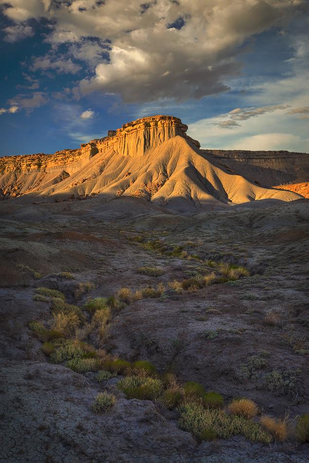 Desert Pathway