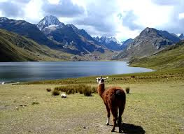 ETAPE DOS CHILE