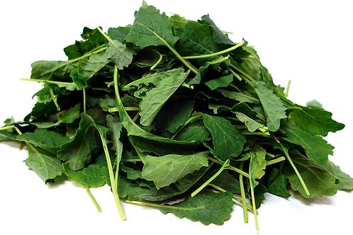 Kale Green Baby