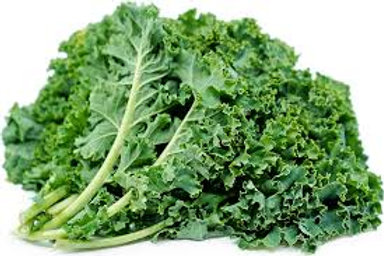Kale Green Bunch