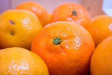 Tangerines - Clementines