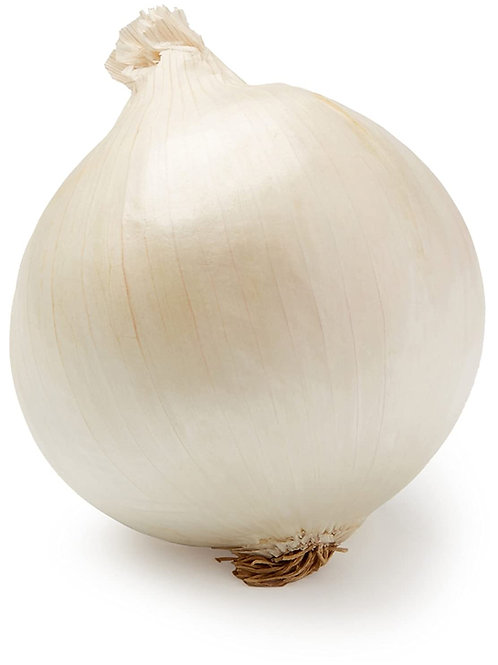 White Onions Large