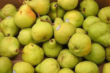 Pears - D'anjou Medium