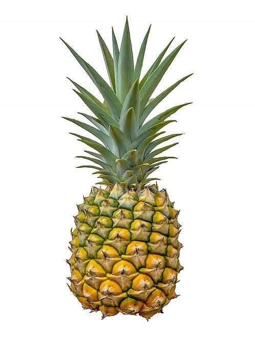 Pineapples - Golden