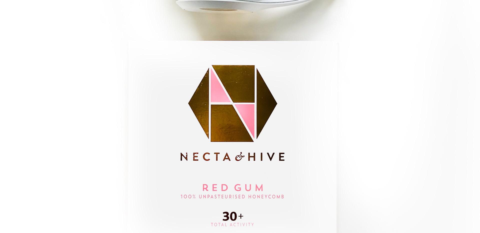 Necta & Hive