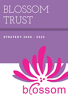 Blossom Strategy 2020-2023.png