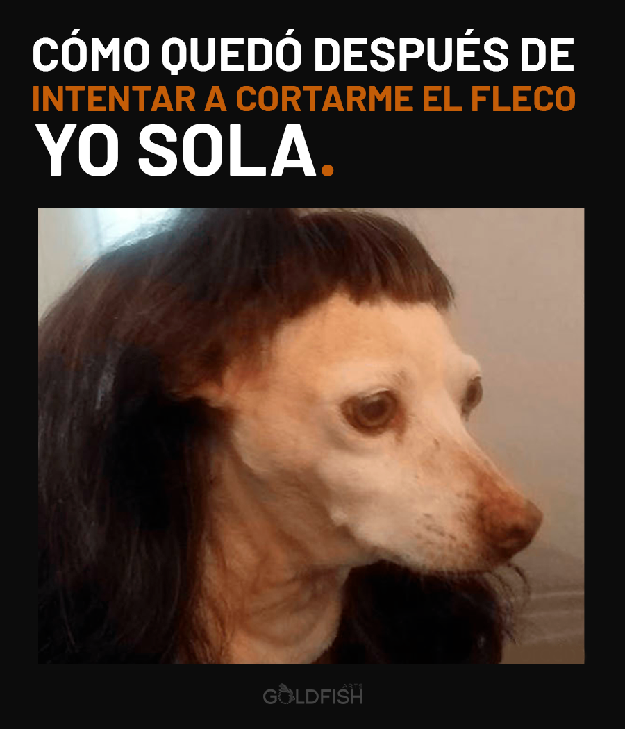 Meme corte de pelo