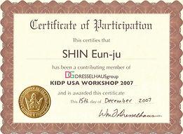 KIDP USA WORKSHOP 2007 DRESSELHAUS GROUP