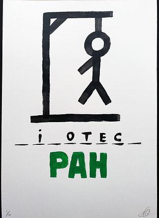 PAH_lámina.jpg