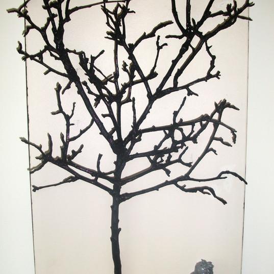 El fruto de la rama mas alta 1.jpg