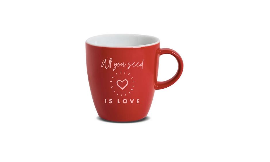 'All you seed is love' mug
