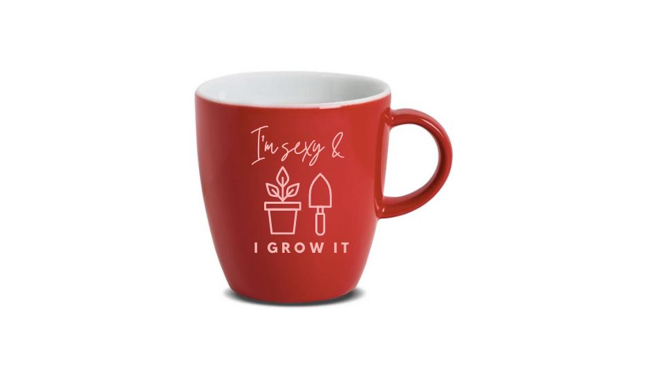 'I'm sexy & I grow it' mug