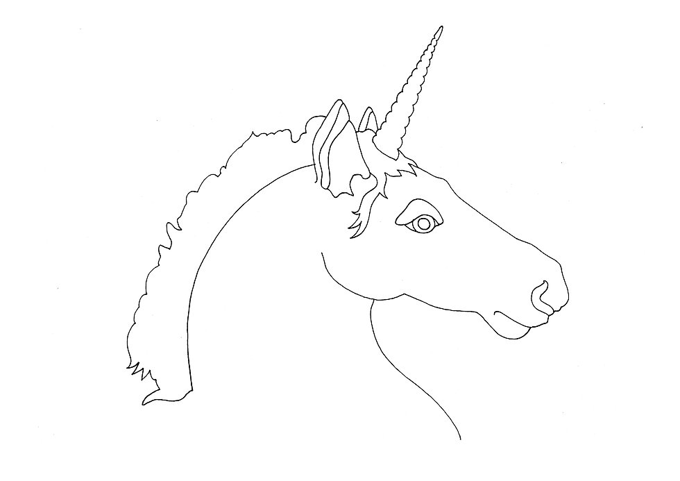 DIY_Unicorn.jpg