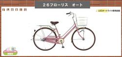 フローリス22800円税込