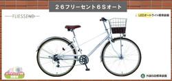 フリーセント24800円税込