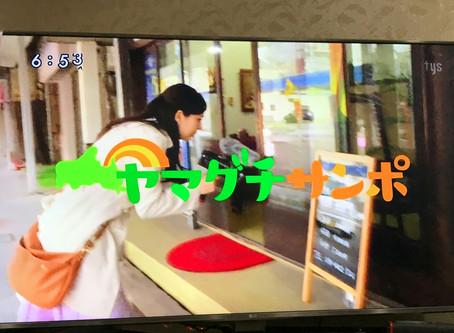 吉方位旅行効果?テレビ山口さんに紹介されました。