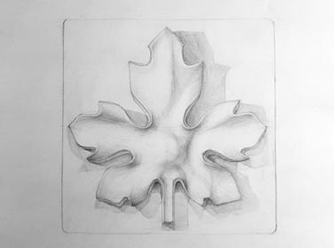 Рисунок розетки карандашом Artintent