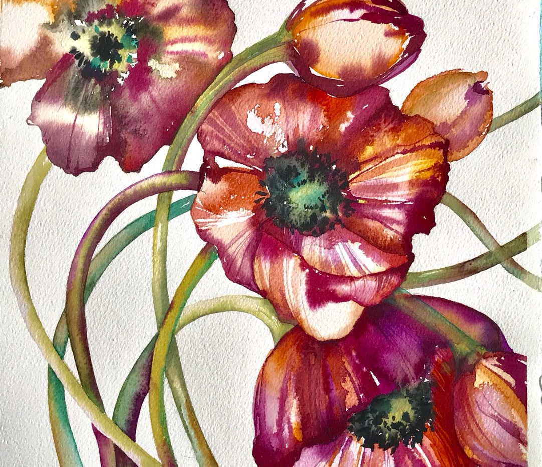 Рисуем цветы акварелью. Анемоны