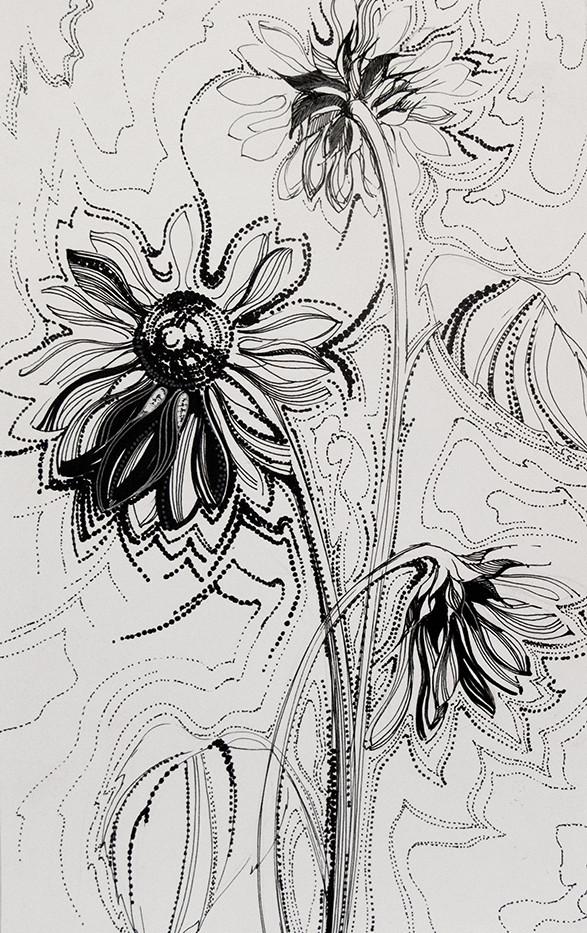 Рисование тушью. Декоративный рисунок
