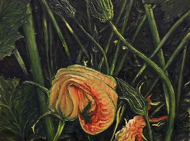 Цветки кабачка. Живопись маслом