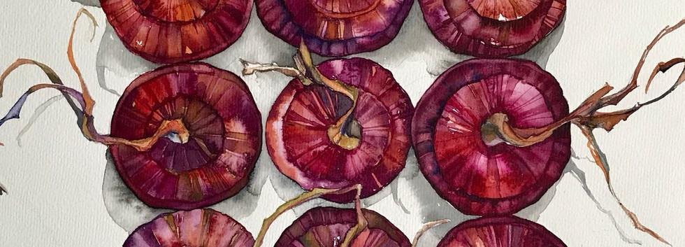 Красный лук. Живопись акварелью