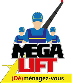 MEGALIFTLOGOSANSFOND.png