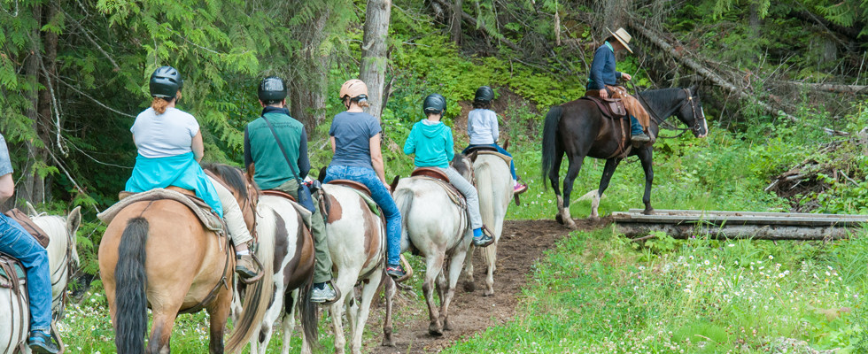 Horse.susan.ryde.photo (10 of 10) (2).jp