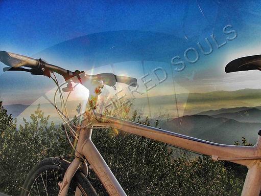 Bike Dream