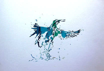 'Kingfisher 3'. Screen-print on paper.