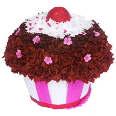 Red Velvet Cupcake Piñata