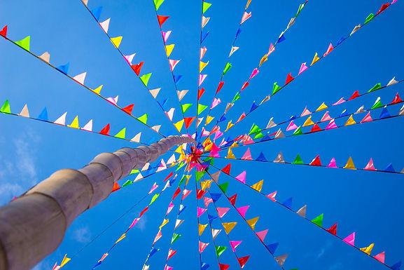 Fiesta Banderitas (Flag Banner)