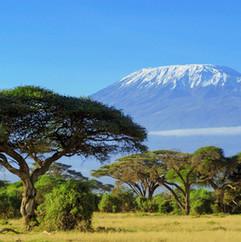 Le Kilimandjaro - Mars 2015