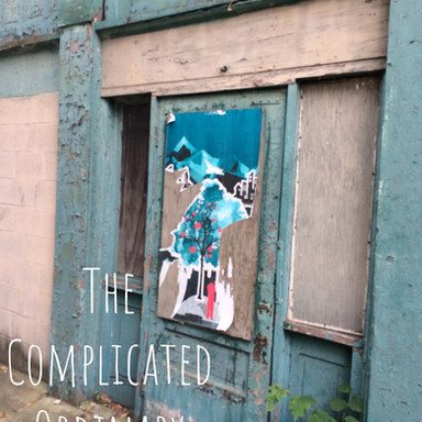 26 The Complicated Ordinary COVER (Song 26)