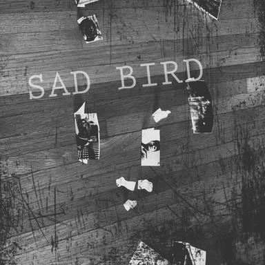 141 Sad Bird (Song 141)