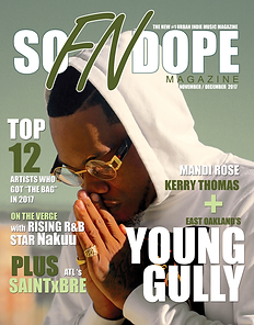 SFND-cOVER-YOUNG-GULLY-with-bleed-FINAL.