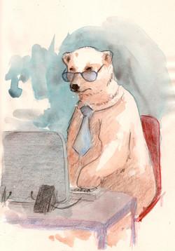 oso polar y el sistema
