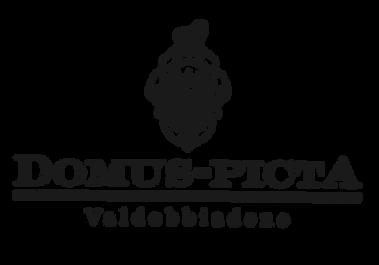 domus picta logo.png