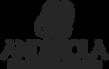 andreola logo.png
