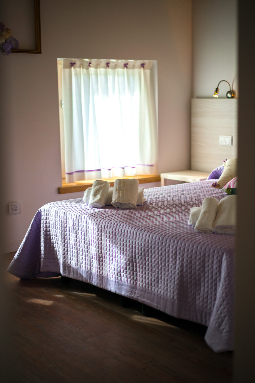 living bedroom camera albergo hotel shoo