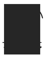 il pedrocchino logo.png