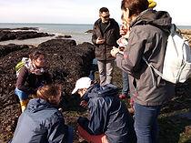 Découverte des algues à Batz sur mer