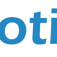 NanotizeIt logo