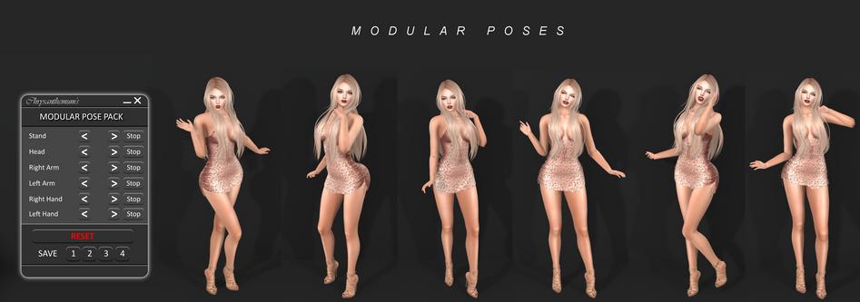 Modular Pose Poster 02.png